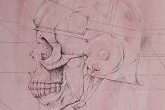 Head 5 - Heads