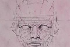 Head 7 - Heads