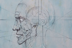 Head 8 - Heads