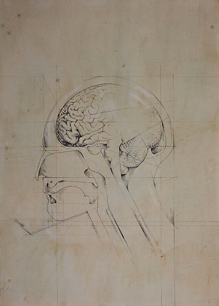 Head 2 - Heads - ©Patrick Faulkner